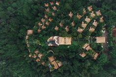 Luxury resort in rain forest Photos Aerial view of luxury resort in rain forest surrounded by trees. Hotel with cottages and swimming po by Jacob Lund Photography Forest Resort, Jungle Resort, Forest Hotel, Bali Resort, Resort Villa, Bungalow Resorts, Resort Plan, Plan Maestro, Jungle House