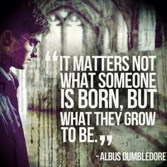 "pg. 708 goblet of fire. ""You fail to recognize that it matters not what someone is born, but what they grow to be!""-Albus Dumbledore"