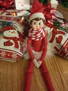 Elf on the Shelf. Twinkle even made herself a matching tutu and a scarf!