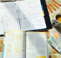 25 Studying Photos That Will Make You Want To Get Your Shit Together