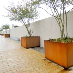 These High Volume Planters Are Suitable For Shrubs Or Multi Stemmed Trees And Easily Relocated During Markets Events