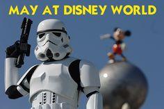 May 2014 at Disney World