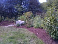 Low maintenance naturalized beds