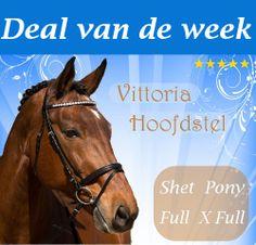 Het Vittoria hoofdstel is gemaakt van hoogwaardig en soepel leer. Het hoofdstel is van het merk Horze en is prachtig afgewerkt. Met een zilveren ketting in de frontriem en het glanzende leer zal dit uw paard of pony zeker niet misstaan. Tevens heeft het hoofdstel een gecombineerde neusriem met voering en een afneembare neusband. De sluitingen zijn ook zilver.   Maten: Pony, Cob, Full & Extra Full  NU tijdelijk € 19,95!   http://happyhorsedeal.nl/deal-van-de-week.html