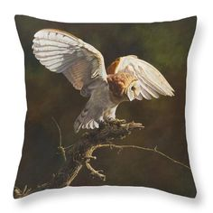 Wildlife Paintings Throw Pillow featuring the painting Barn Owl by Alan M Hunt - Cushion Wildlife Paintings, Wildlife Art, British Wildlife, Pillow Sale, Birds Of Prey, Color Show, Pillow Inserts, Fine Art America, Colorful Backgrounds