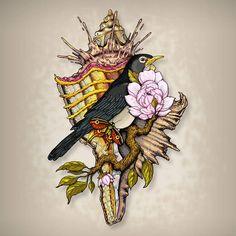 el pájaro, carta de loteía 31