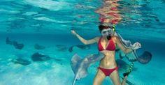 Grand Cayman Island. Stingray City. Swimming with the Stingrays, amazing