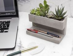 Kikkerland Concrete Desktop Planter to add some spice to your work life.