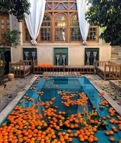 Some Good Reasons to Travel to Iran – From the Sublime Cuisine to the Rich History via Persian Architecture, Cultural Architecture, Art And Architecture, Persian Decor, Iran Pictures, Shiraz Iran, Patio Central, Persian Garden, Iran Travel