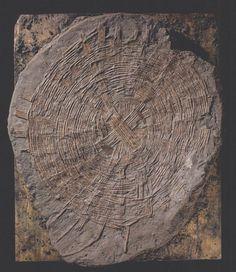 Segnalo alcuni testi di studi sulla storia e archeologia della cesteria, in gran parte reperiti sul sito Instrumentum del Groupe de travail europeén sur l'artisanat et les productions manufacturées…