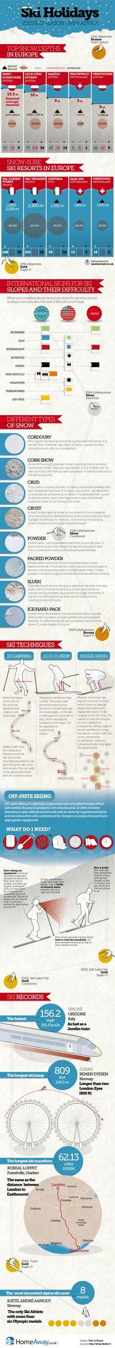 Infografik passend zur bevorstehenden Skisaison...