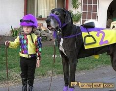 Little jockey halloween costume.