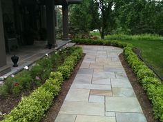 The Bluestone walkway lined with Boxwood. How perfectly simple! Curb Appeal www.sarahscottagecreations.com Landscaping Retaining Walls, Front Walkway Landscaping, Landscaping Tips, Walkway Ideas, Paver Walkway, Path Ideas, Garden Landscaping, Stepping Stone Paths, Paving Stones