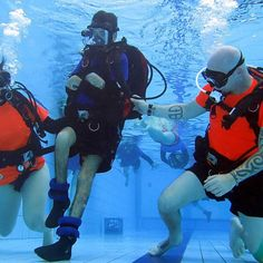 #National Disability Awards: Underwater world honoured for its immersion therapy - ABC Online: ABC Online National Disability Awards:…
