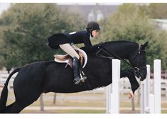 The most important role of equestrian clothing is for security Although horses can be trained they can be unforeseeable when provoked. Riders are susceptible while riding and handling horses, espec… Cute Horses, Pretty Horses, Horse Love, Horse Girl, Beautiful Horses, Equestrian Boots, Equestrian Outfits, Equestrian Style, Equestrian Fashion