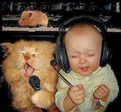 Funny Cat Baby Hamster Music Band Photo