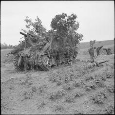 Camouflaged Priest 105mm self-propelled gun of 31st Field Regiment, Royal Artillery during the assault on Caen, 17 June 1944 / Un canon motorisé Priest 105mm camouflé du 31 Field Regiment Royal Artillery, lors de l'attaque sur Caen