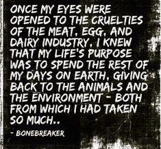 Vegan words
