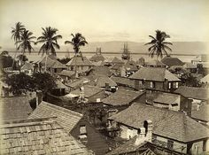 Port Royal, 1891 Photo by James Valentine and Sons