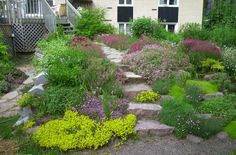 la rocaille Zen, Outdoor Spaces, Outdoor Decor, Stepping Stones, Garden Design, Sidewalk, Landscape, Plants, Image