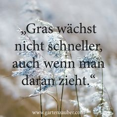 Grass does not grow faster, even if you pull it ಌ
