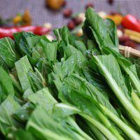 Légumes #Hainan #Chine