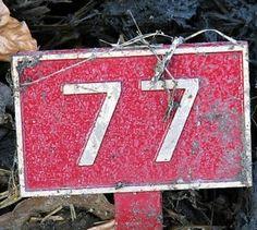 「number 77」的圖片搜尋結果 Numbers, Home Decor, Decoration Home, Room Decor, Home Interior Design, Home Decoration, Interior Design