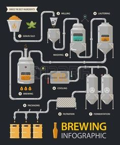 Brewing infographic of beer production process with tanks and filters. Milling and lautering, brew and cooling, fermentation and filtration, packaging stages. Alcohol or booze, factory line and drink de elaboración de la cerveza Beer Brewing Process, Home Brewing Beer, Homebrew Recipes, Beer Recipes, Beer Infographic, Beer Factory, Brew Your Own Beer, Craft Bier, Brewery Design