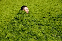 A man covers himself in algae as he plays with his friends at the seaside in Qingdao, Shandong province, on July 3, 2013. (REUTERS/Stringer)