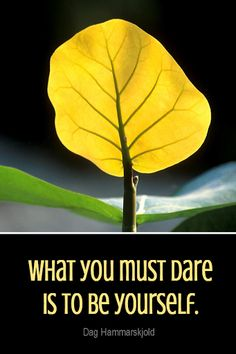 Daily Quotation for August 10, 2013 #quote #quoteoftheday What you must dare is to be yourself. - Dag Hammarskjold