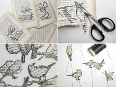 Birds from books