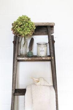 Old ladder brought back to life,  Lisa Madigan