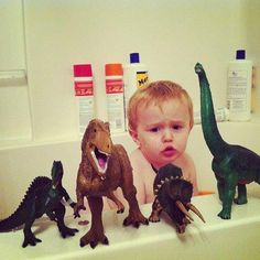 Here is one of our young fans, Cole, enjoying Safari dinos during bath time. He sure looks serious studying his dinos.