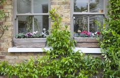 Looking back into the house, Leopoldina Haynes has used a darker shade of Dulux Chalky Downs on the window frames, which has been echoed in the colour of the wooden planters