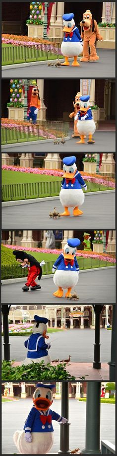 Donald was so pleased