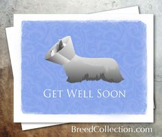 Skye Terrier from the TriPodDog Breed Collection - Greetings Collection - Thank You, Get Well, Pet Sympathy and Thinking of You - set of 4