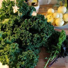 Tupun tupa: Lehtikaalin pakastus Celery, Smoothie, Vegetables, Plants, Food, Essen, Smoothies, Vegetable Recipes, Meals