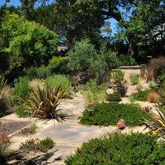 Mediterranean Garden Design Ideas, Pictures, Remodel, and Decor - page 14