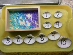 """Count out the correct number of beads to put in each numbered shell ("""",)"""
