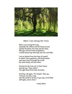 When I Am Among the Trees ~ Mary Oliver  The trees have the wisdom Hannah,from your mummy