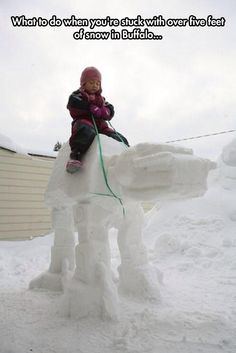 Snow Walker Machine
