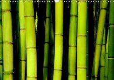 BAMBUS - CALVENDO Kalender - http://www.calvendo.de/galerie/bambus-2/ - #bambus #kalender