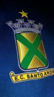 Blog do Bellotti - Esporte Clube Santo André: Santo André define o seu elenco