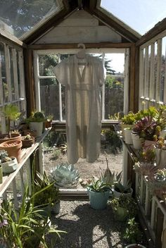 greenhouse via apartmenttherapy
