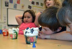 "Hattie's Preschool students watch as their science experiment begins to ""rain"" food coloring. Learn more about Hattie's Preschool at http://www.hattielarlham.org/v/preschool.asp."
