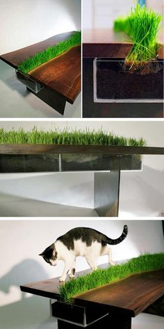 Mesa césped /Grass table #recycle design