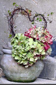 hydrangeas & heart. Simply beautiful. Speaks to my heart!