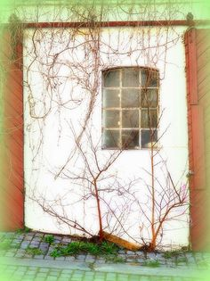 Framed Prints, Canvas Prints, Famous Artists, Knock Knock, Norway, Art Pieces, Houses, Windows, Natural