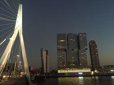 Erasmus Bridge, Rotterdam, NL.