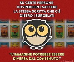 * Italian Humor, I Hate My Life, Feelings Words, Funny Times, Wise Owl, Snoopy, Cool Words, Grumpy Cat, Have Fun